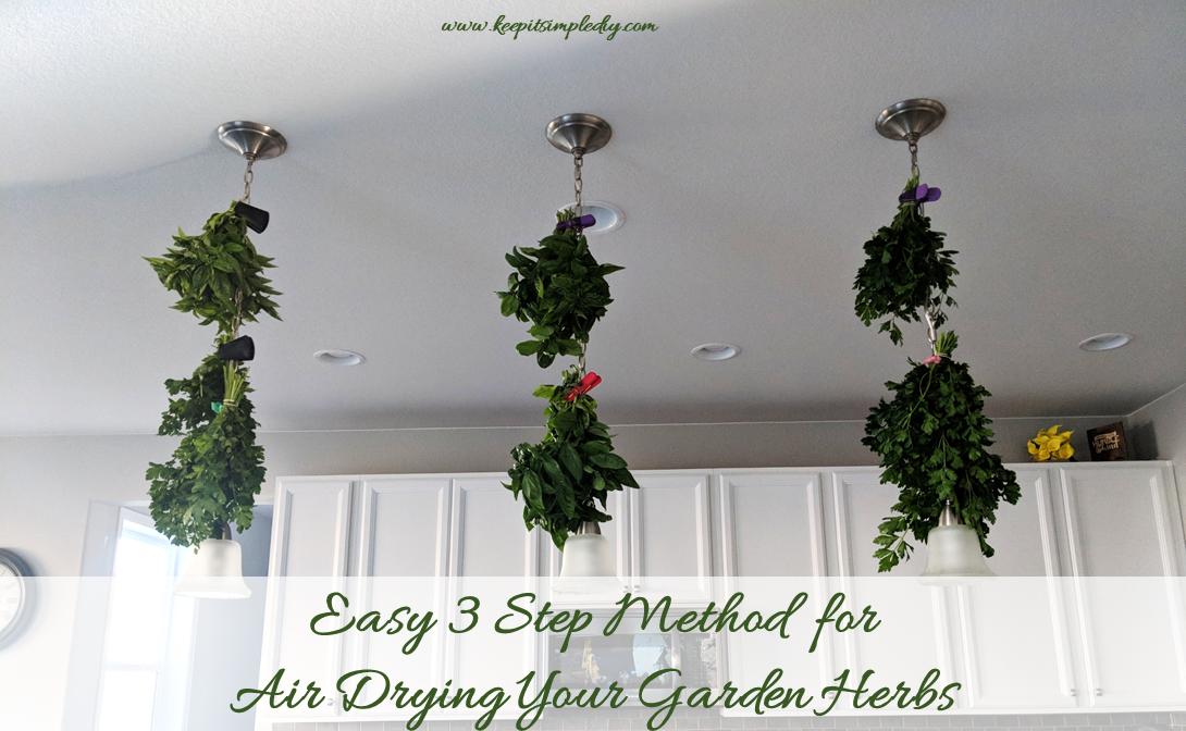 Drying-Garden-Herbs